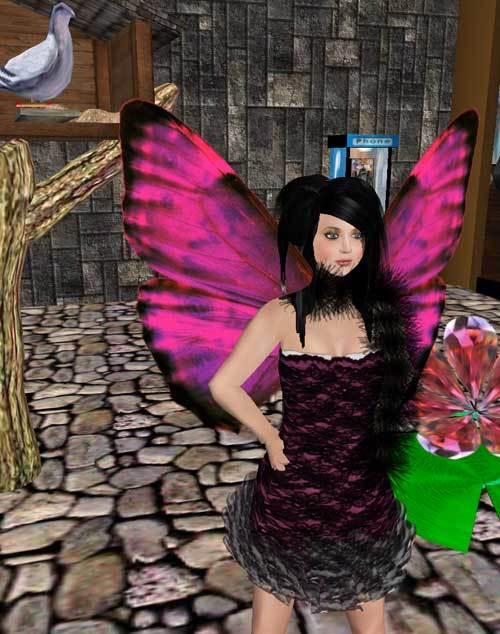 セカンドライフの蝶のはねの写真
