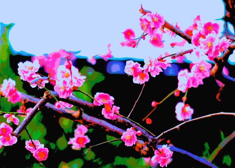 梅の花のフォトアート2