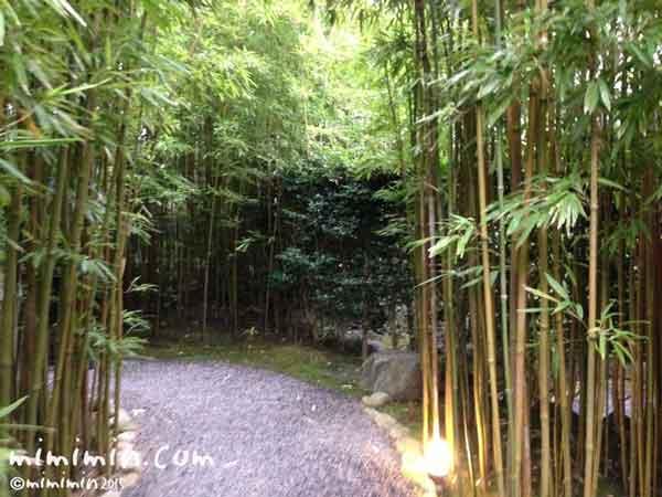 伊東温泉の宿「月のうさぎ」の写真