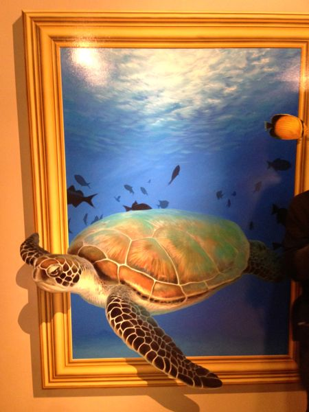 熱海トリックアート迷宮館の亀の絵