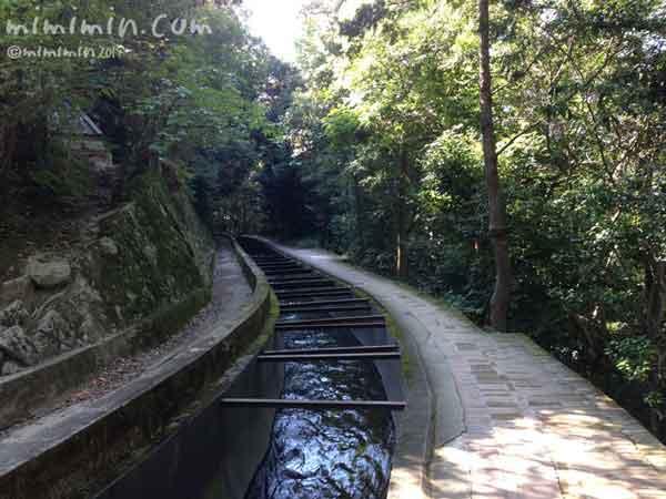 琵琶湖疏水の写真