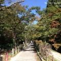 京都の哲学の道の写真