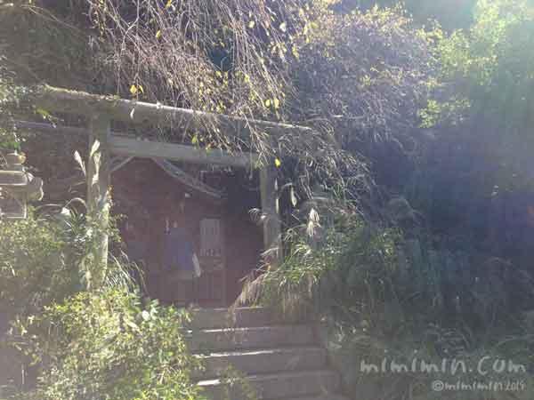 大豊神社(哲学の道)の写真