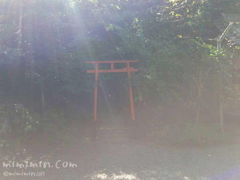大豊神社の鳥居の写真