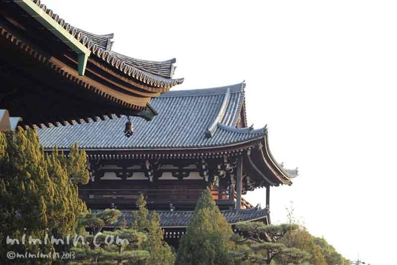 東福寺の三門と本堂の写真