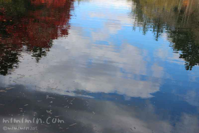 雲場池(軽井沢)の画像
