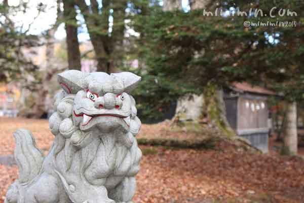 諏訪神社の狛犬の写真
