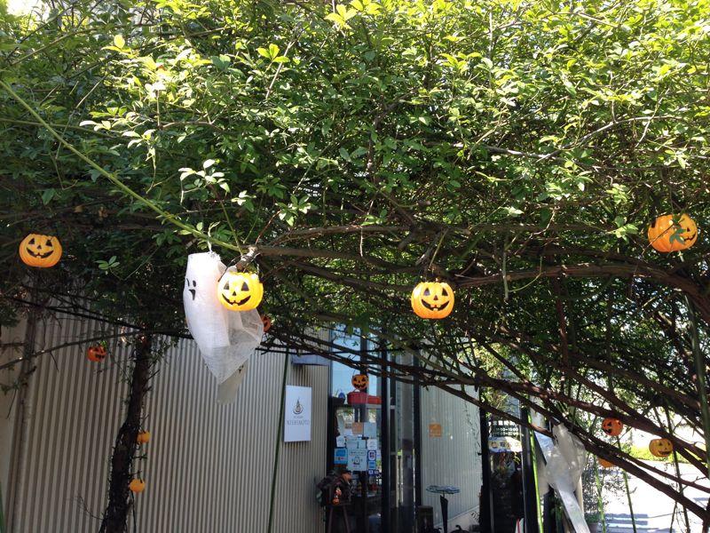 レストラン西本 (シノワーズ厨花)の画像