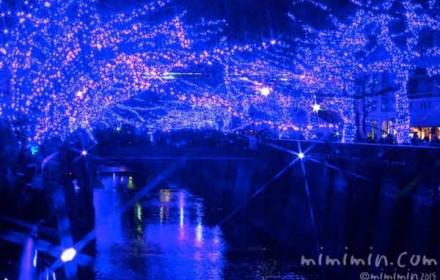 青の洞窟の画像