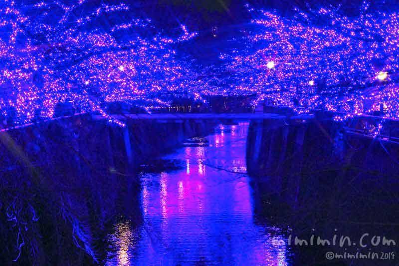 中目黒のイルミネーション「青の洞窟」の画像