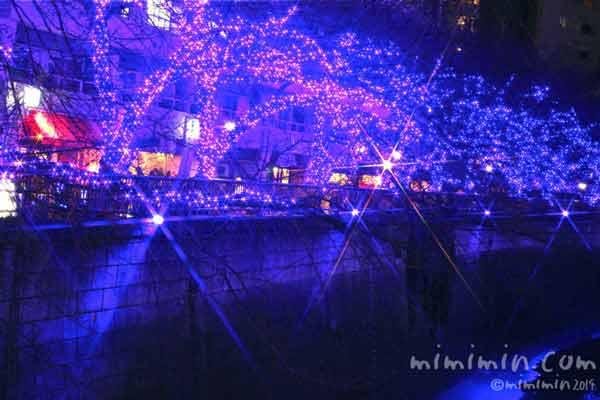 中目黒「青の洞窟」2014の画像