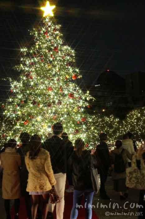 恵比寿ガーデンプレイスのイルミネーションとクリスマスツリー2015年の写真
