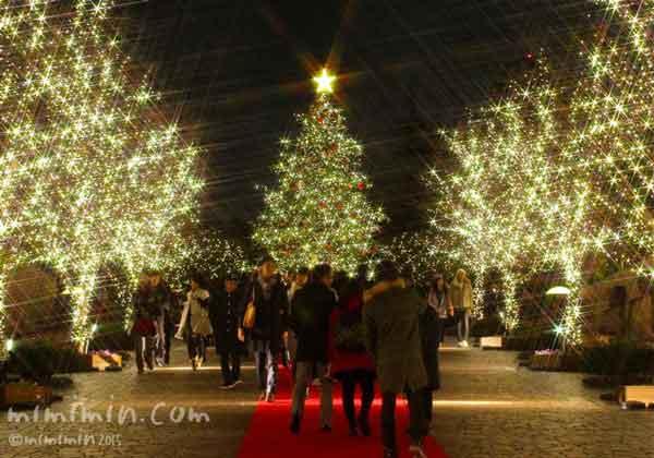 恵比寿ガーデンプレイスのイルミネーションとツリー2015年の画像