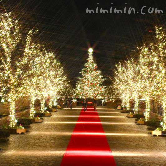 恵比寿ガーデンプレイスのクリスマスイルミネーションの画像