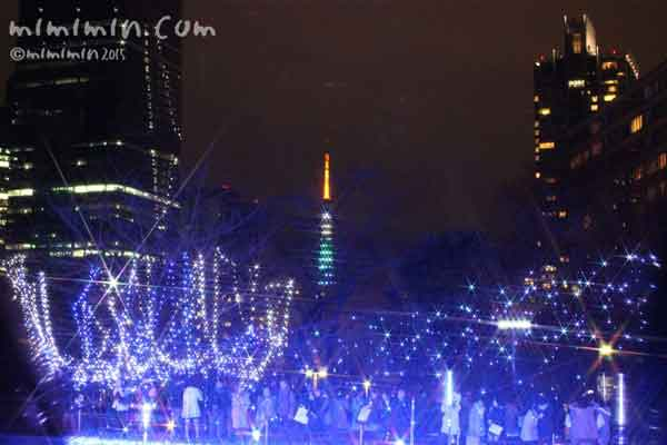 スターライトガーデン2015と東京タワーの画像