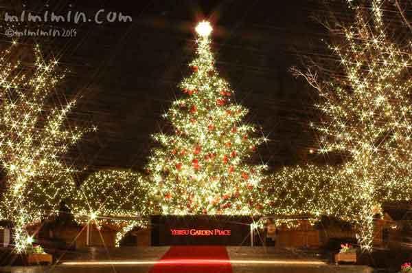 恵比寿ガーデンプレイスのイルミネーションのクリスマスツリーの写真