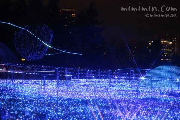 東京ミッドタウンのスターライトガーデン2015の画像
