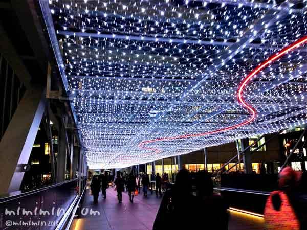 グランフロント大阪のライトアップの写真