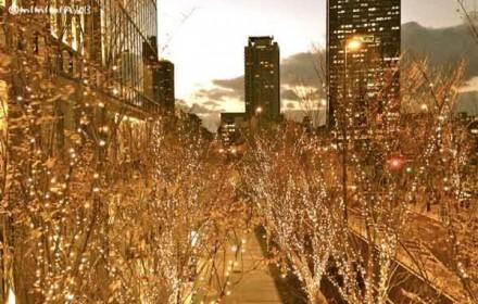 大阪のイルミネーションの写真