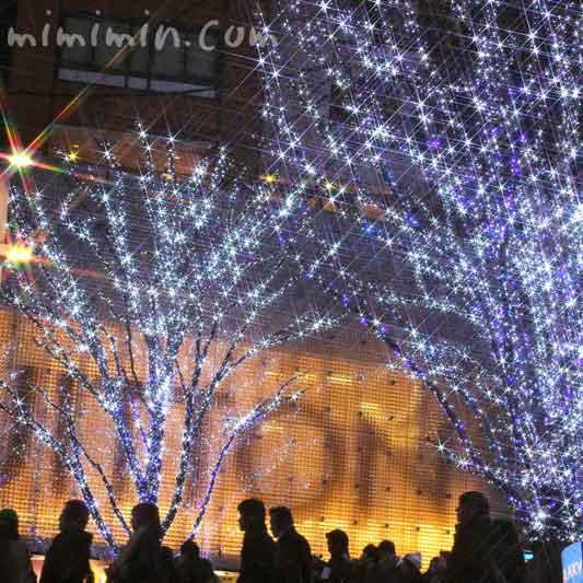 六本木のクリスマスの写真