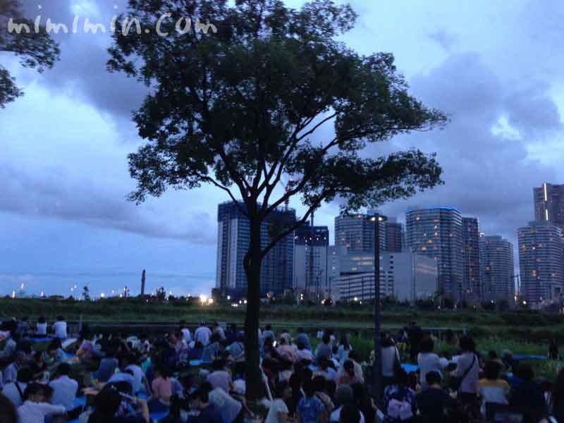 神奈川新聞花火大会の横浜ポートサイド公園の写真