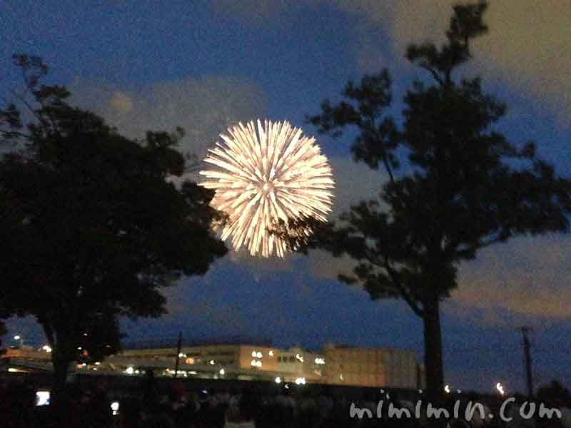 横浜ポートサイド公園の花火の写真
