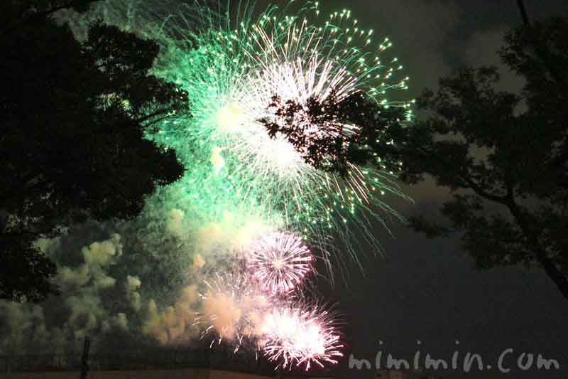 神奈川新聞花火大会の花火の写真