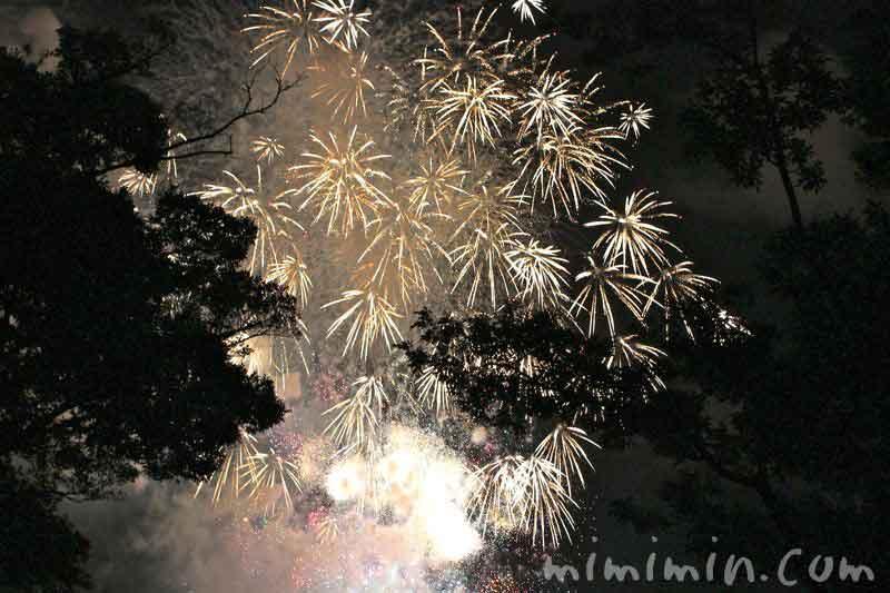 横浜の花火の画像