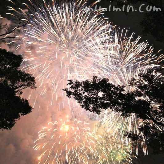神奈川新聞花火大会・横浜ポートサイド公園の花火の写真