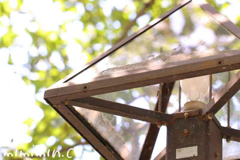目黒川の街灯の写真