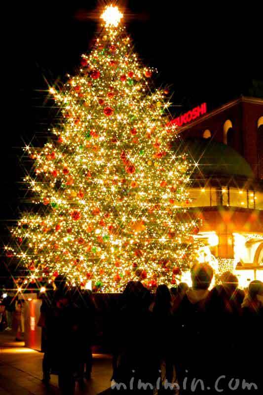 クリスマスツリー(恵比寿ガーデンプレイス)2016年