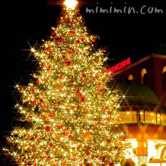クリスマスツリー(恵比寿ガーデンプレイスのクリスマスイルミネーションの写真)