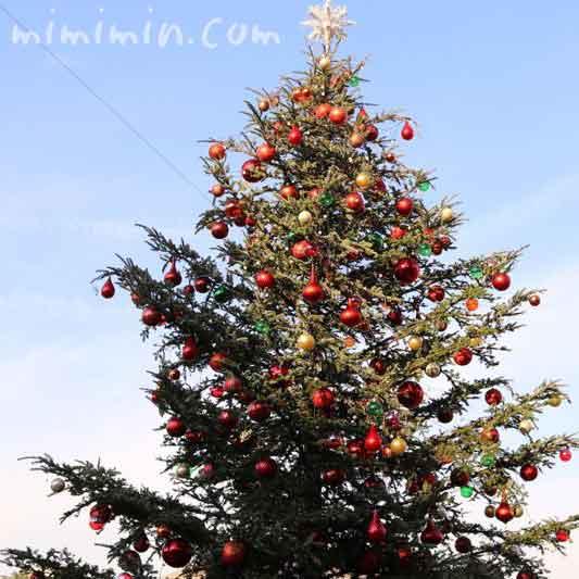 クリスマスツリー(恵比寿ガーデンプレイス)