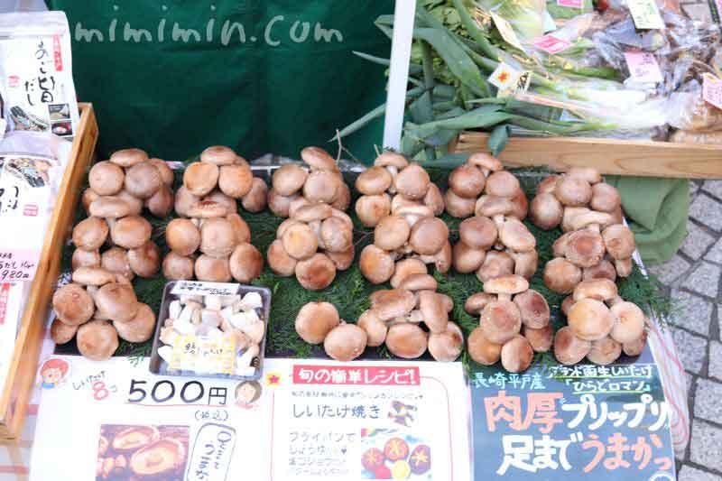 恵比寿マルシェのシイタケの画像