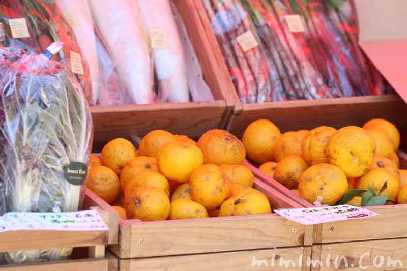恵比寿ガーデンプレイスの恵比寿マルシェの野菜と果物の写真