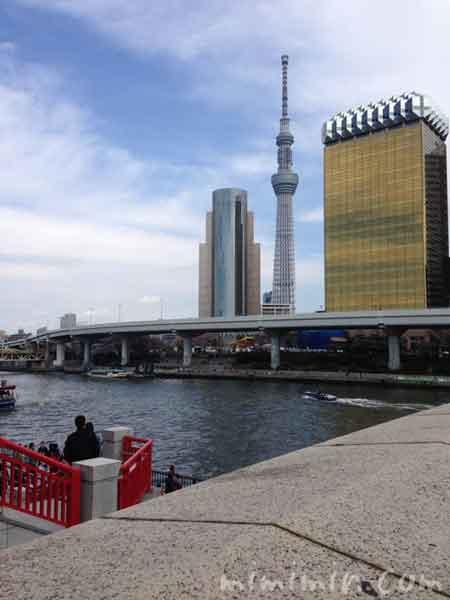 隅田川とスカイツリーの写真
