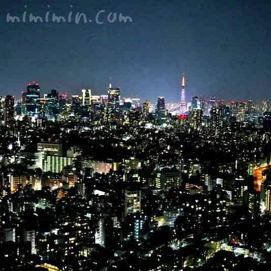 えびす坂 鳥幸の夜景の写真