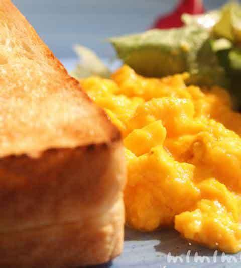 俺のベーカリー&カフェでワンコと朝食(恵比寿ガーデンプレイス・犬OKのカフェ)