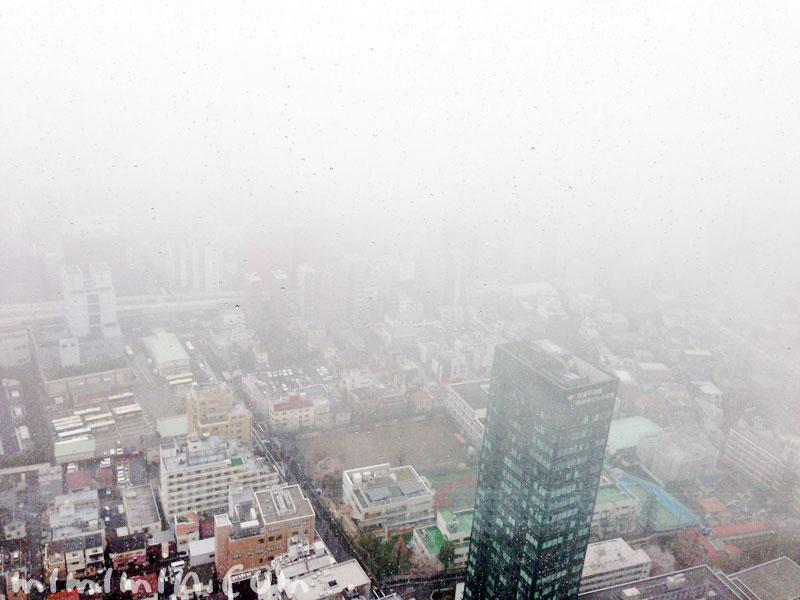パークハイアット東京のピークラウンジの景色の画像