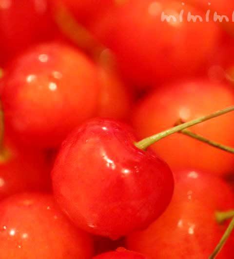 サクランボ(桜桃)の花言葉・名前の由来