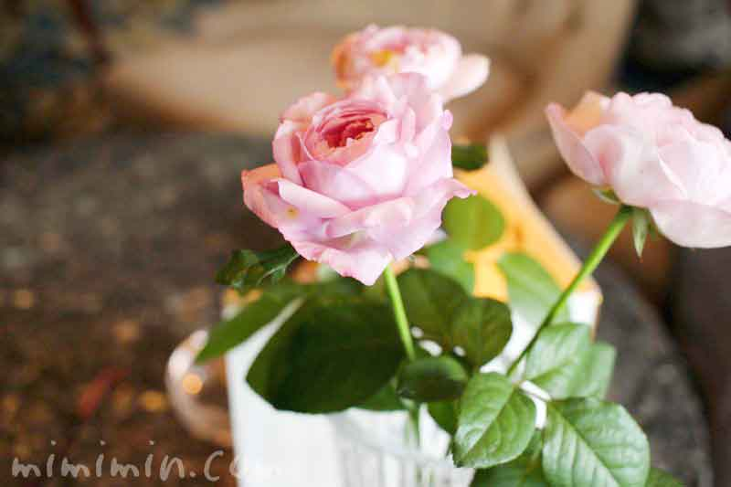 バラの花・スカイラウンジ コンパスローズ・ウェスティンホテル東京の画像