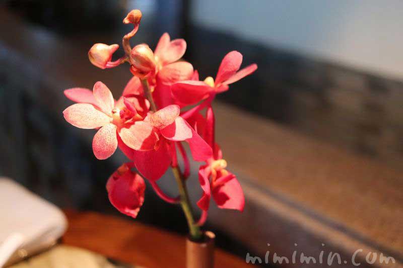 花|ヘイフンテラスの画像