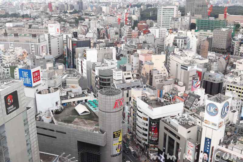 旬菜(渋谷エクセルホテル東急)の画像