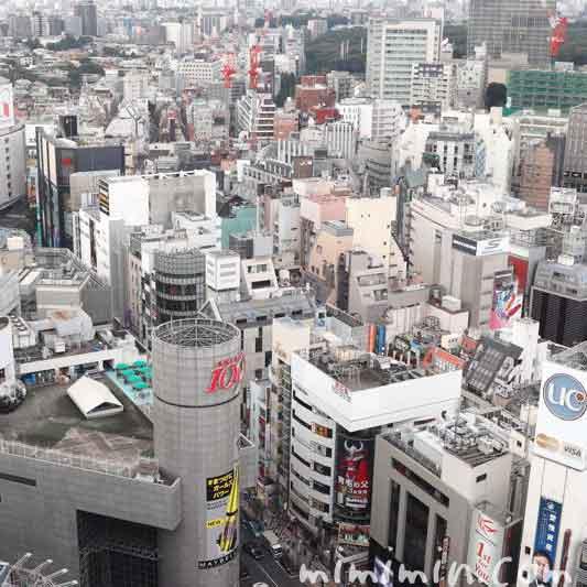 旬菜のランチ(渋谷エクセルホテル東急)の写真