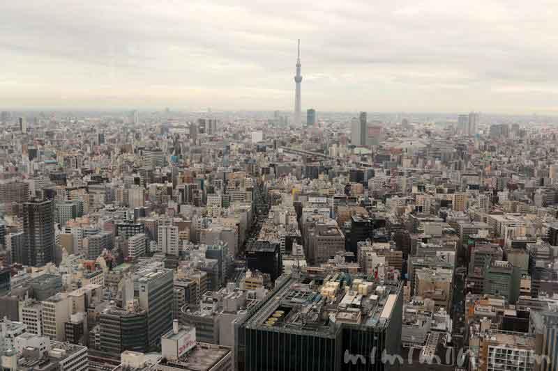 広東料理 センス(マンダリン オリエンタル 東京)の画像
