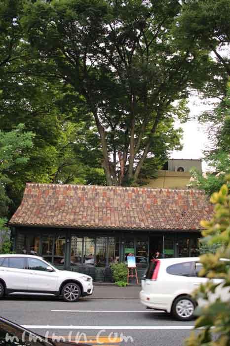 カフェ・ミケランジェロ(代官山のカフェ)
