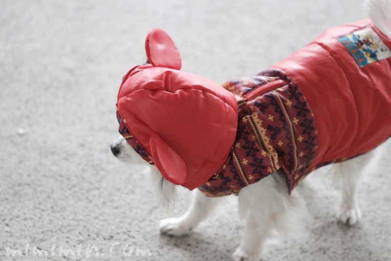 ペットパラダイスのミッキーのフード付きコートの画像