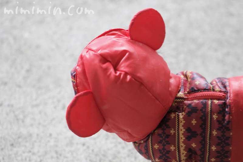 ミッキーのフードをかぶったチワワの写真
