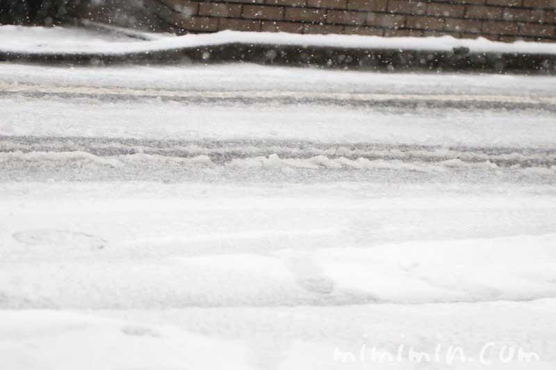 東京の積雪の画像