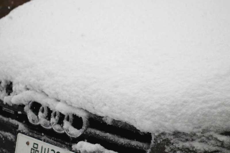 雪に埋もれる車の写真